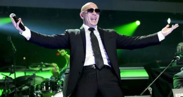 Capture Pitbull