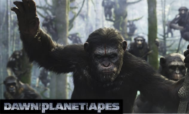 Dawn of The Planet of The Apes Trailer Hits The Internet