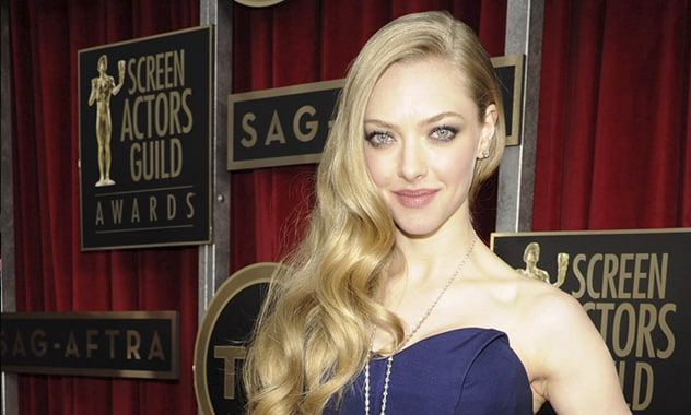 Amanda SeyFried Unknownigly Smuggled This Onto a Plane, Tweets Apology To TSA