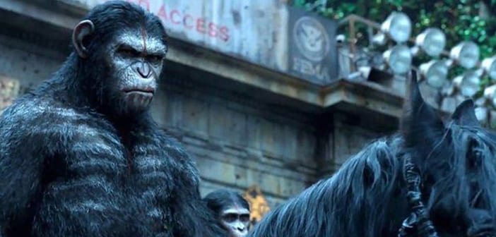 "Watch the Final Trailer for ""Dawn Of The Planet Of The Apes"""