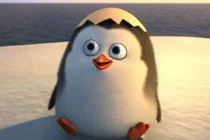 """Penguins of Madagascar"" Gifts SNEAK PEAK Showing How The Penguins Met"