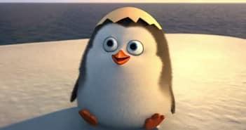 Capture penguins