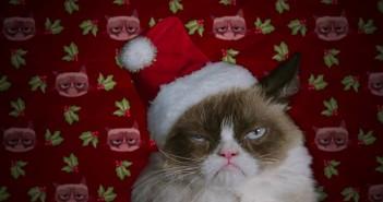 Grumpy-Cat Lifetime Movie