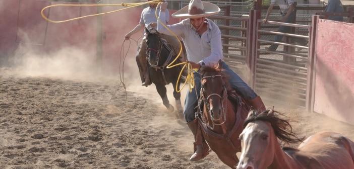 Los Cowboys Prod Photo roping 2