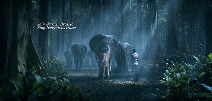 'The Legend Of Tarzan' Partners With STOP IVORY  To Save The Forest Elephants Of Gabon From Extinction 2