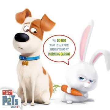 sectret life of pets